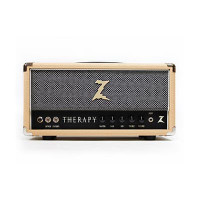 Dr Z Therapy Amp