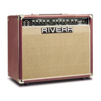 Rivera Chubster 40 Amp