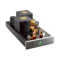Cary Audio CAD 805 Mono Amps